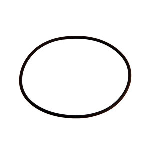 Mercedes-Benz SL 113 Lower Seal Ring For Fuel Pump 0109975045